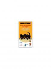 Scrum E Agile Em Projetos - 02 Ed