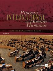 Processo Internacional De Direitos Humanos - 6